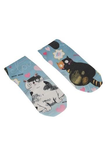 Ogobongo Çorap Renkli